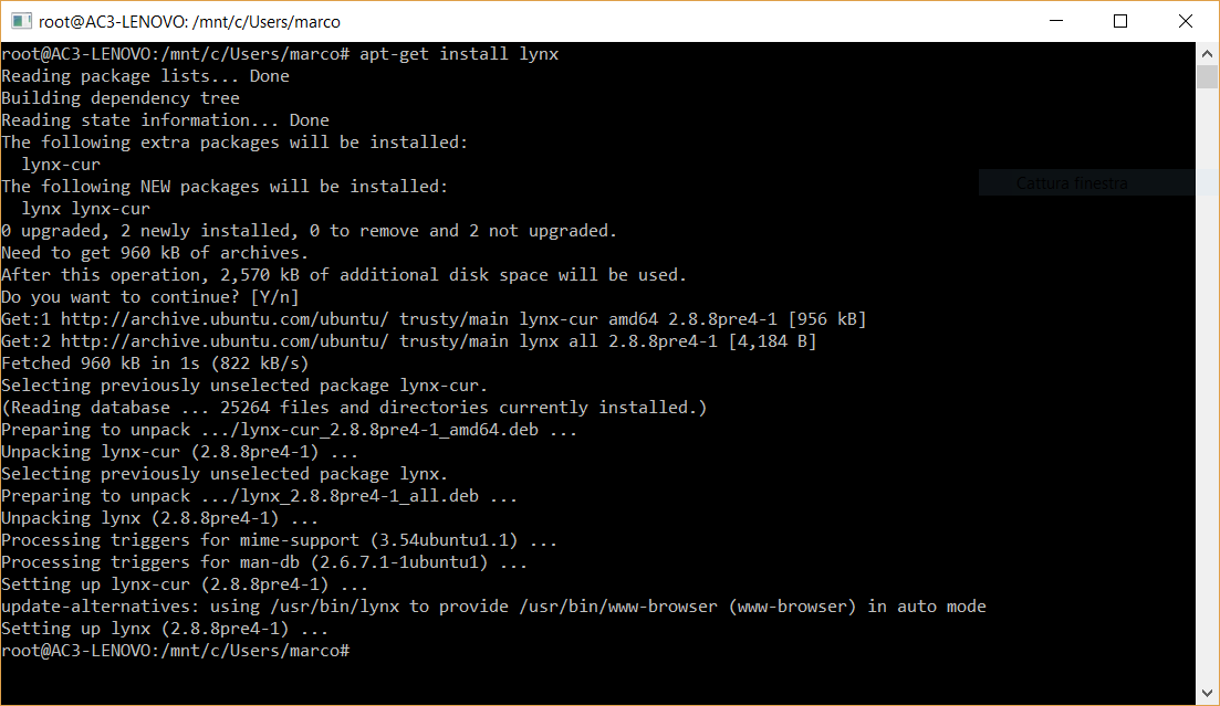 installazione lynx su windows10 usando la bash shell